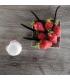 Macarons de Bain Vanille Fraise